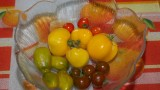 Tomates indoor
